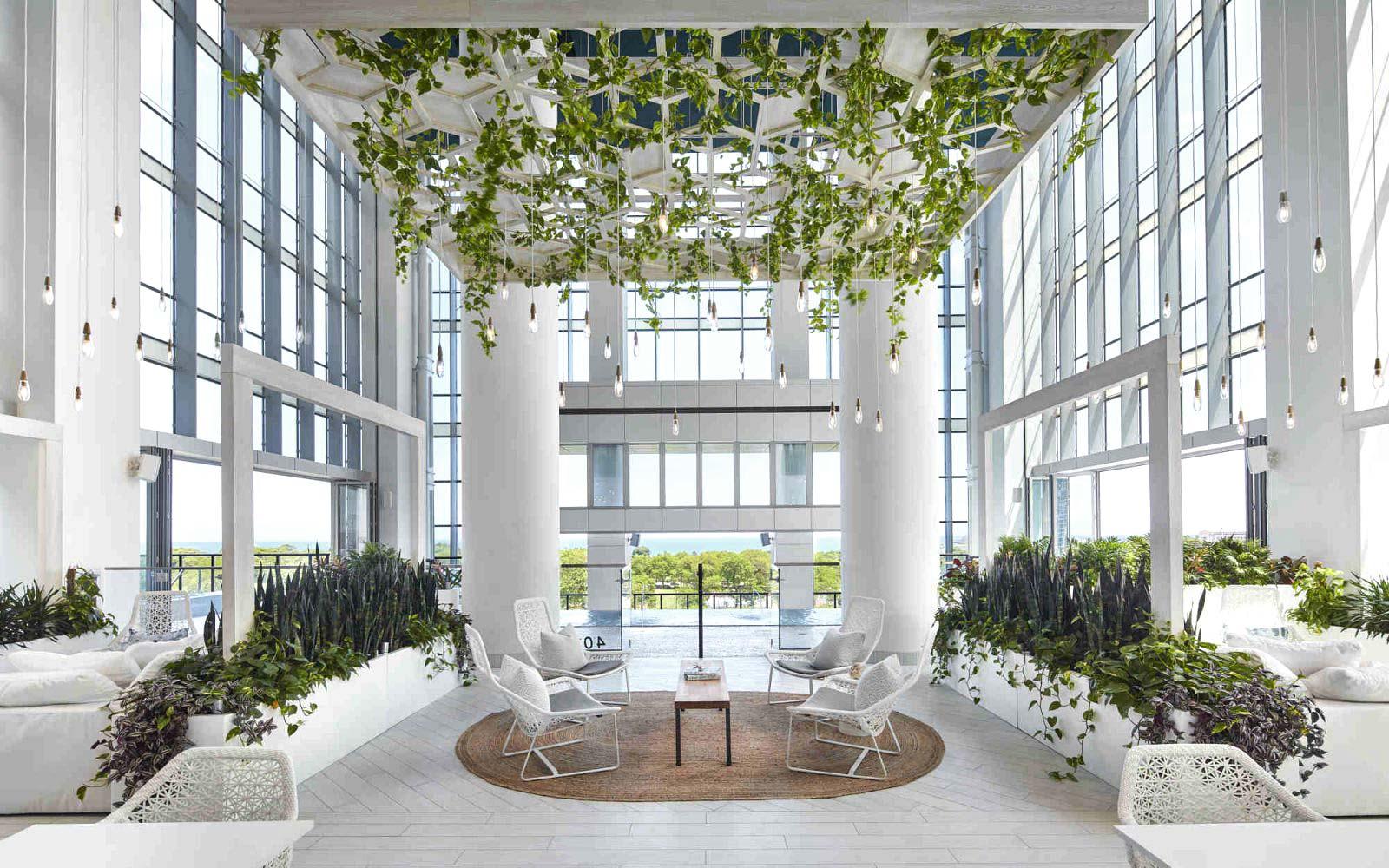 Essex interior garden lounge space