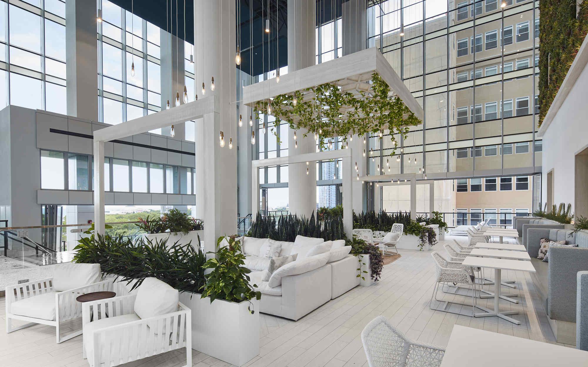 Essex interior garden and lounge