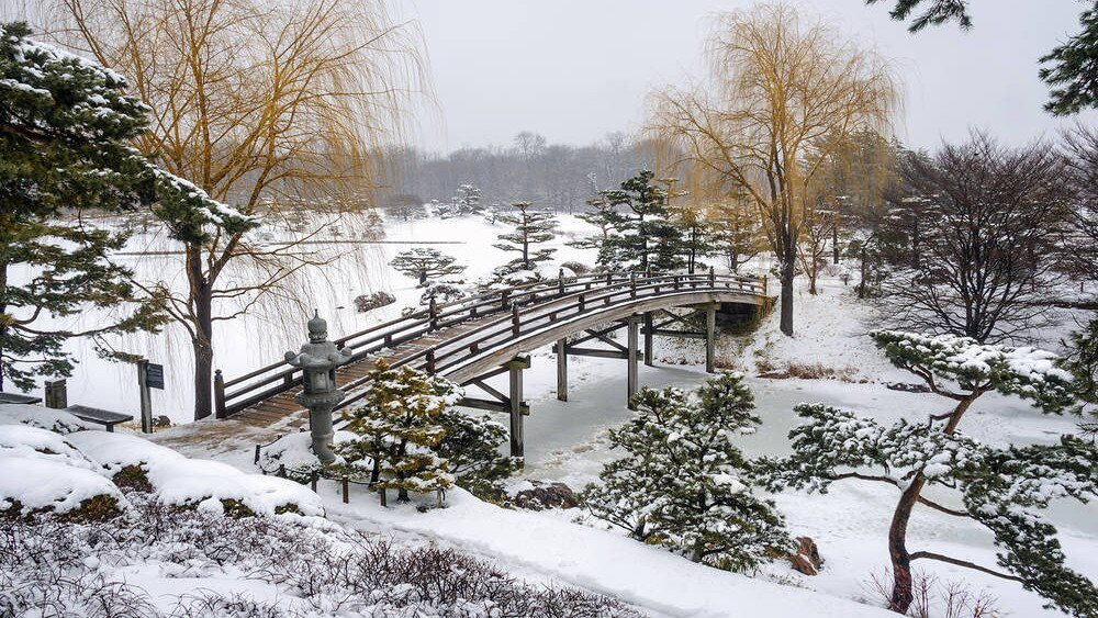 Renaissance North Shore botanic garden winter