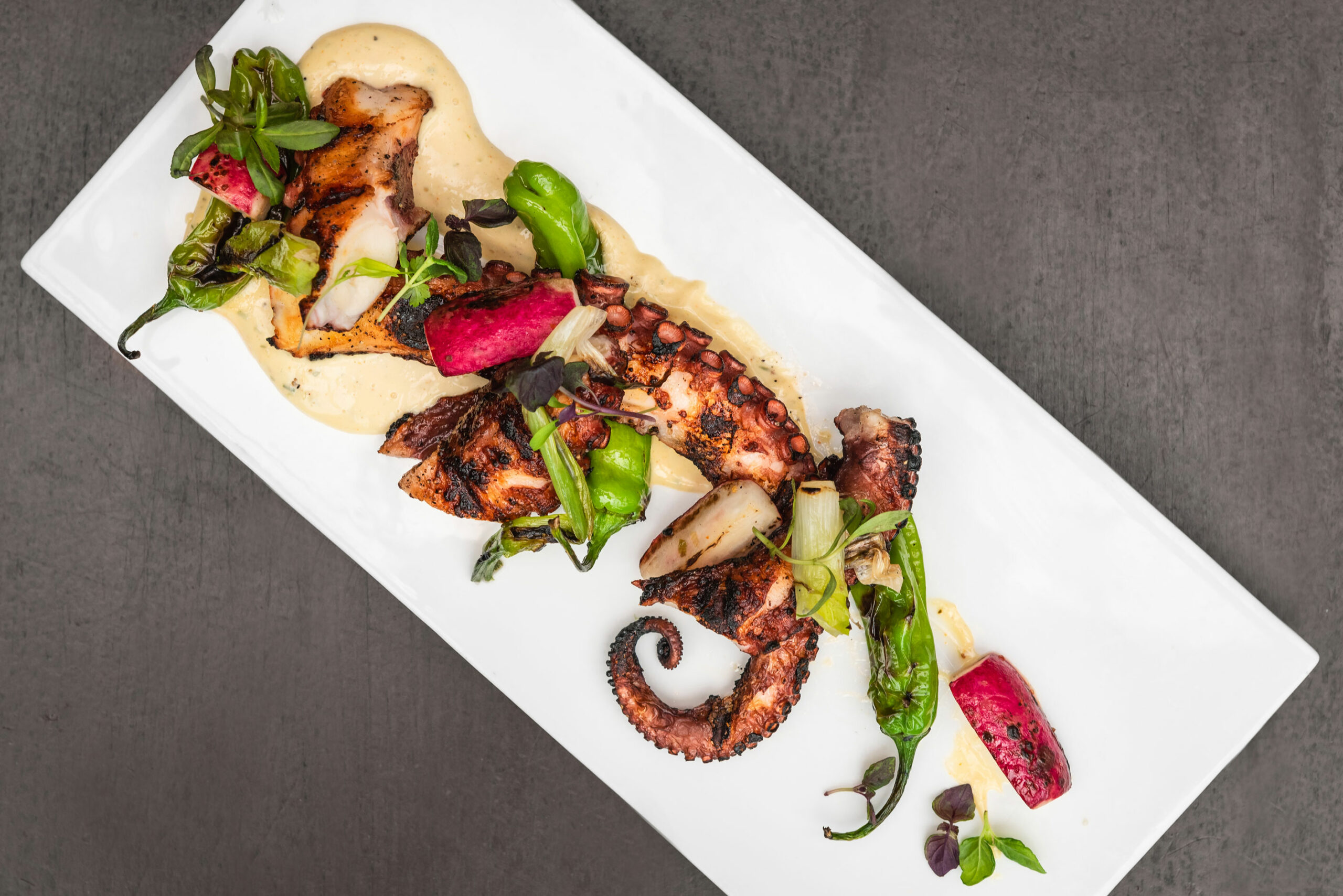 octopus - IO menu